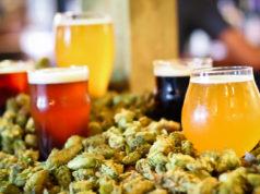 Craft Beer Tips