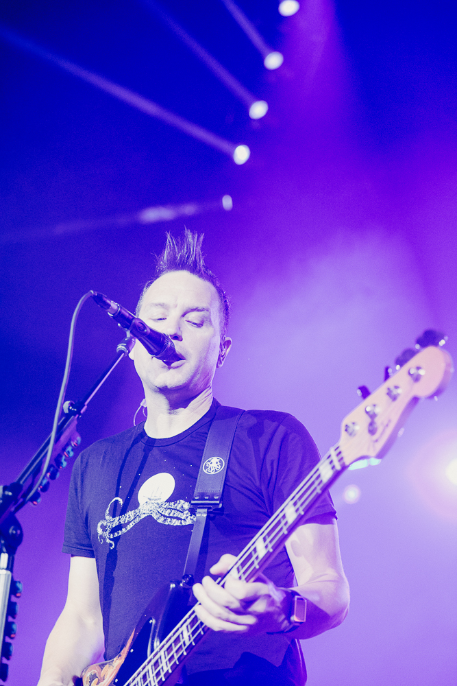 Mark Hoppus Bass Guitar for Blink 182 - Photo Credit: Roshan Moayed